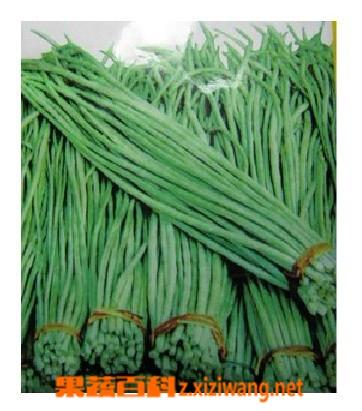 果蔬百科长豆角怎样做好吃